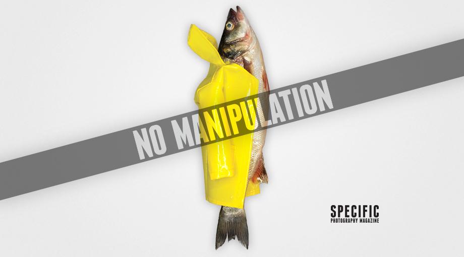 Mamüllerinde Manipülasyon Bulundurmayan Fotoğraf Dergisi